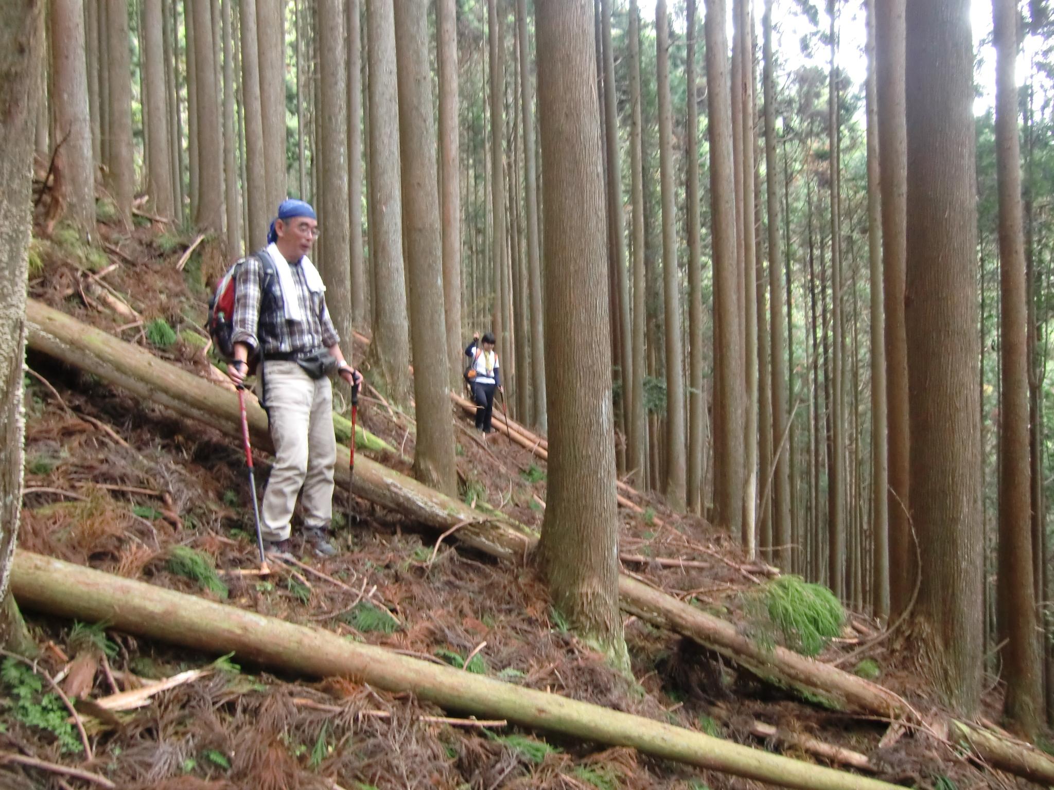第55回山歩きの会「鎧岳兜岳」 イメージ